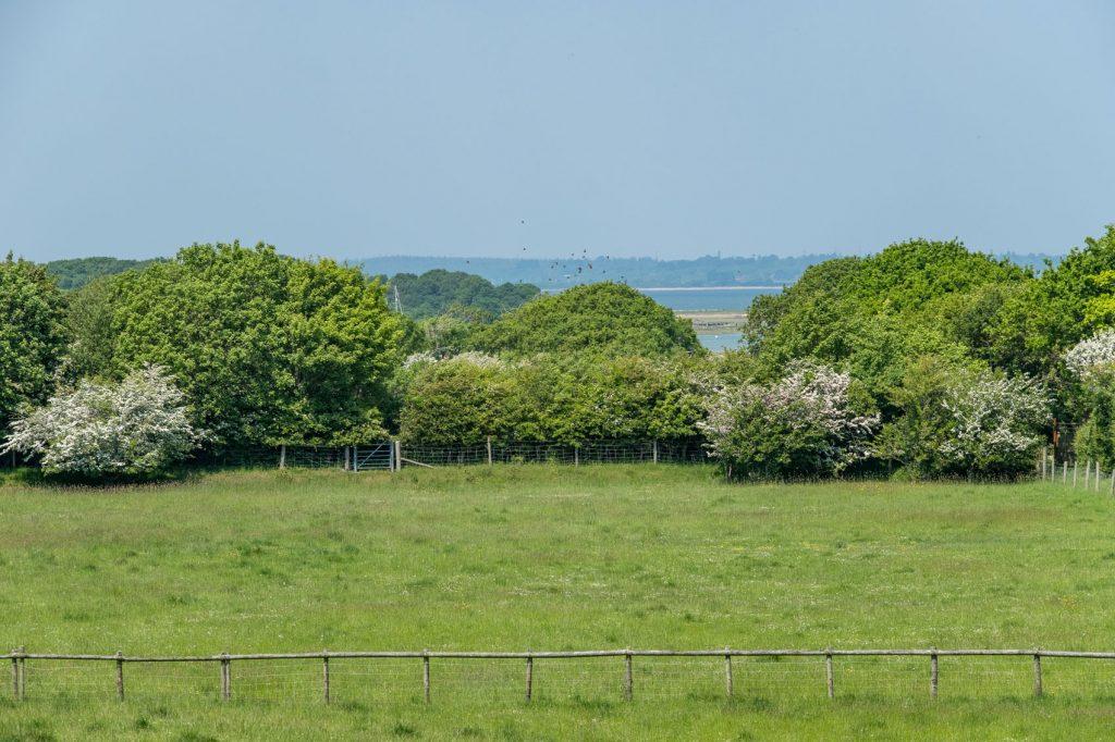 Shalfleet Farmhouse Rear Field 1