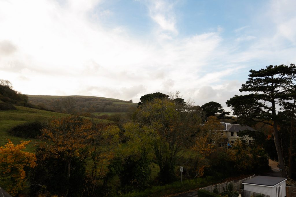 Photo of Luccombe hill, behind the Priory building